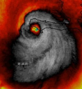 A Hurricane Named Harry