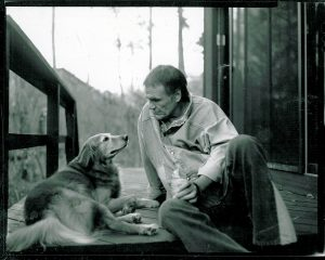 Harry Crews' Literary Bestiary | National Pet Day